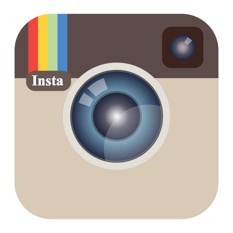logo instagram color vector